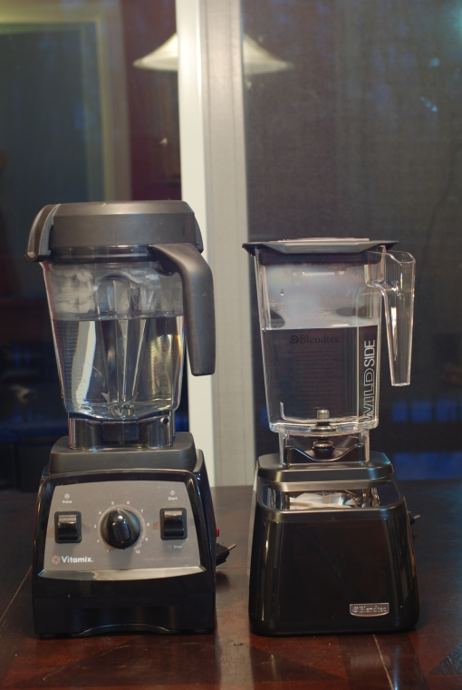 Vitamix Professional Series 300 and Blendtec Designer Series with 48oz of water.